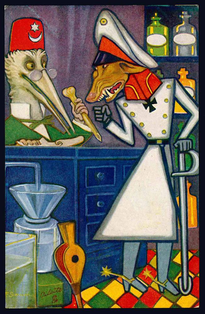 5 cartoline illustrate (mm 139x88), non scritte