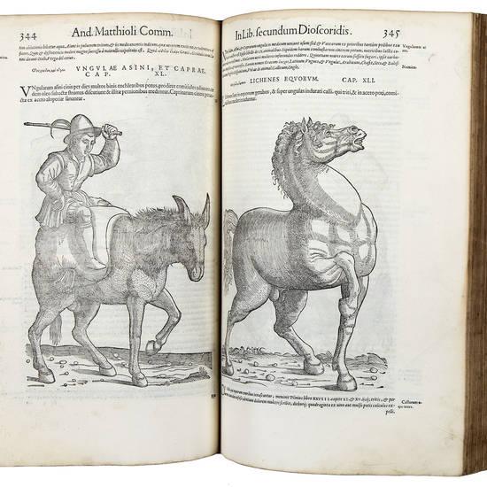 Commentarii in sex libros Pedacii Dioscoridis Anazarbei de medica materia