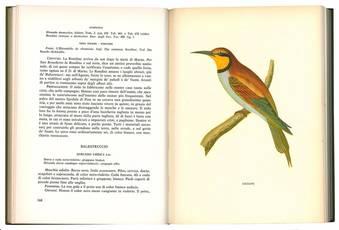 Ornitologia toscana ossia descrizione e storia degli uccelli che trovansi nella Toscana con l'aggiunta delle descrizioni di tutti gli altri proprj al rimanente d'Italia. Volume primo (-secondo).