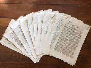 Giornale Italiano. Nn. 242-250 e nn. 298-299.