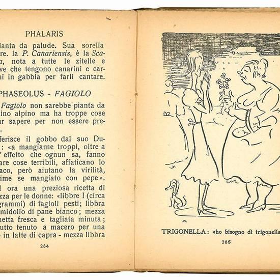 Alpinia intimo di I. Ambrosini disegni di F. Vellan.