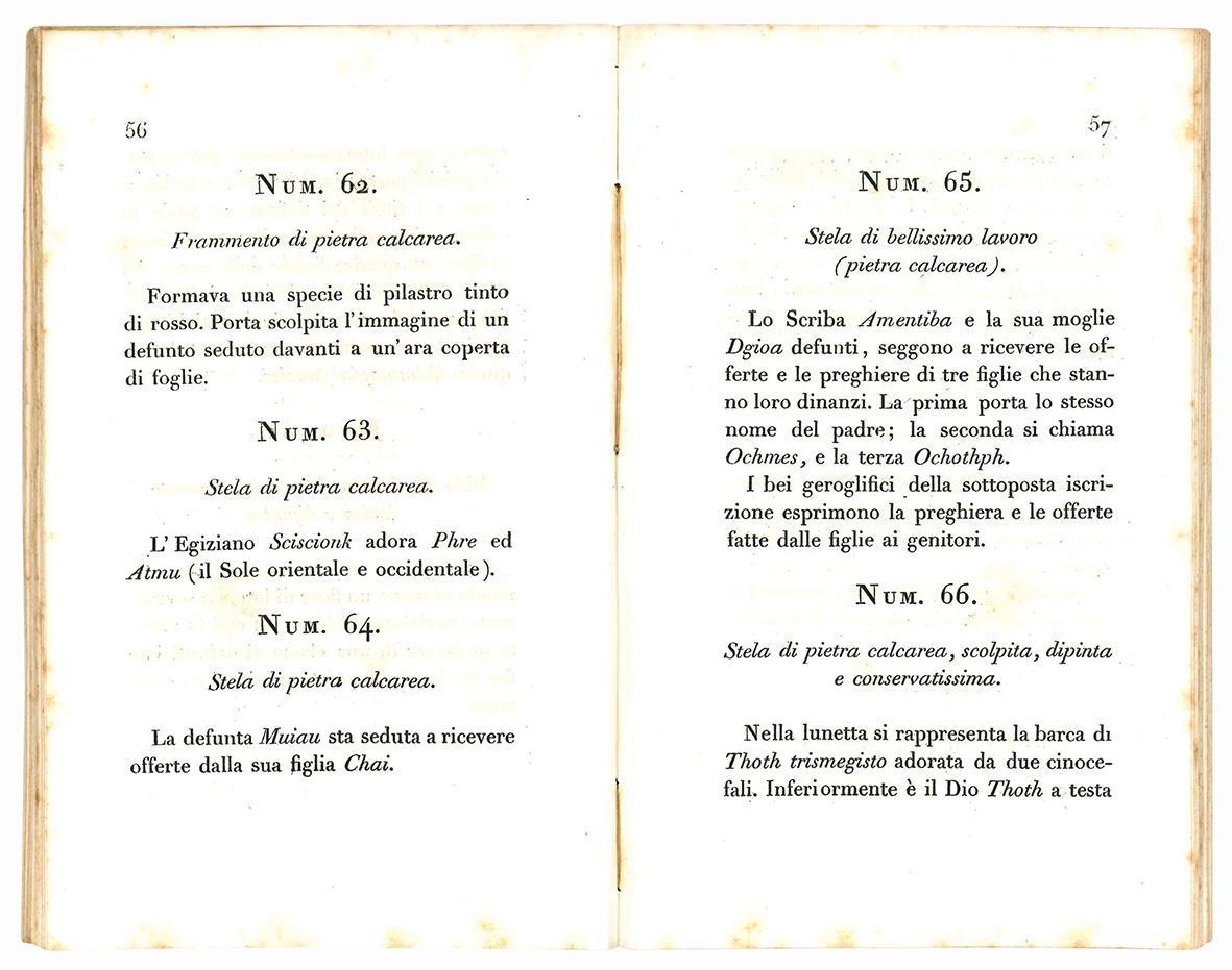 Breve notizia degli oggetti di antichità egiziane riportati dalla spedizione letteraria toscana in Egitto e in Nubia eseguita negli anni 1828 e 1829. Ed esposti al pubblico nell'Accademia delle arti e mestieri in S. Caterina.